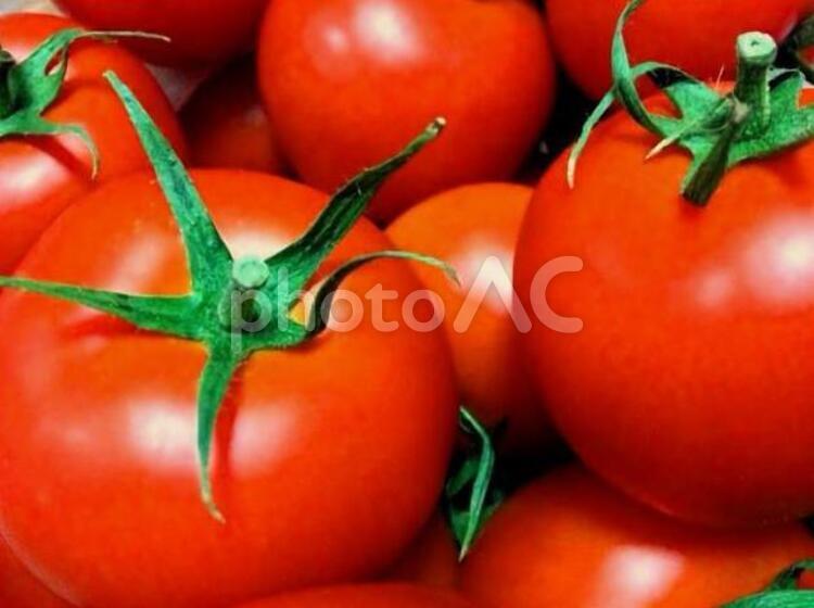 真っ赤なトマトの写真