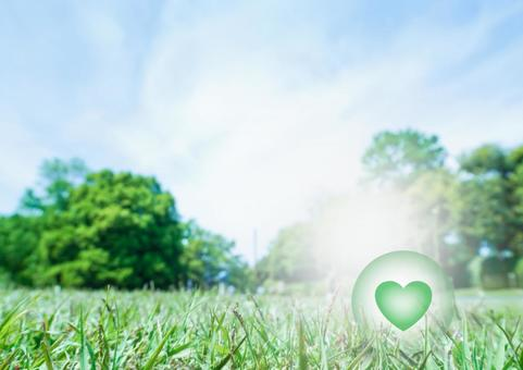 Lawn and green heart
