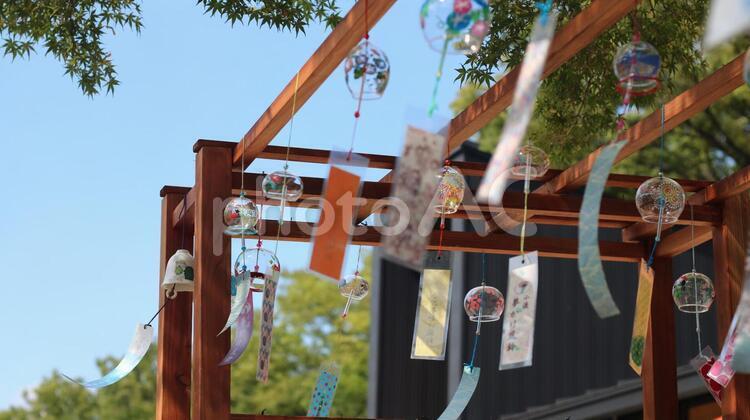 愛知 風鈴 納涼 夏 日中 風 風鈴複数 夏風の写真