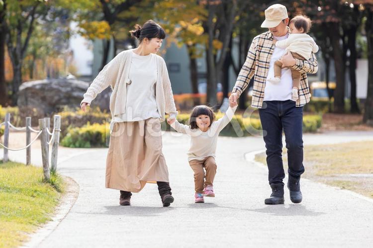 秋の公園で遊ぶ家族・ファミリーの写真