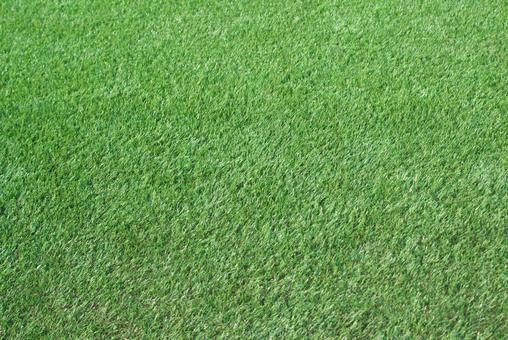 Lawn_artificial turf_44