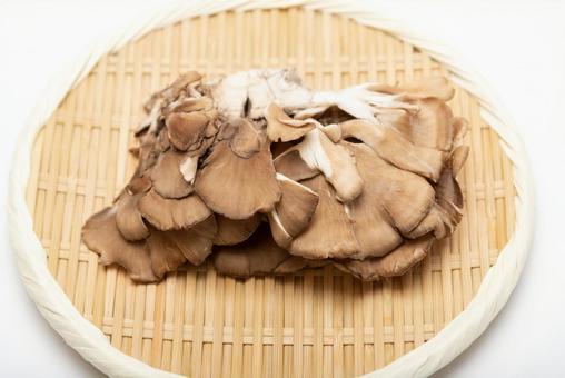 원숭이 위에 놓여있는 버섯