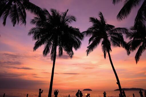 Beach resort 296
