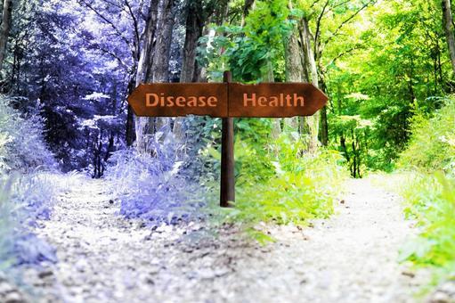 건강의 갈림길 Health-Disease