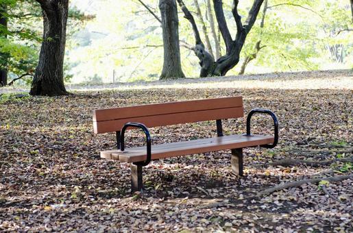 落葉和長凳2