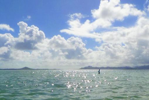 하와이의 바다 4