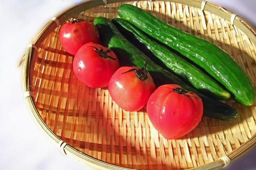 Tomato and cucumber # 6