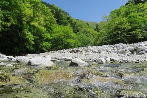 Landscape of fresh green and clear stream and blue sky