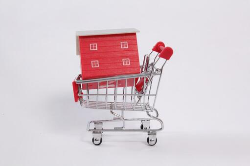 Shopping cart 48