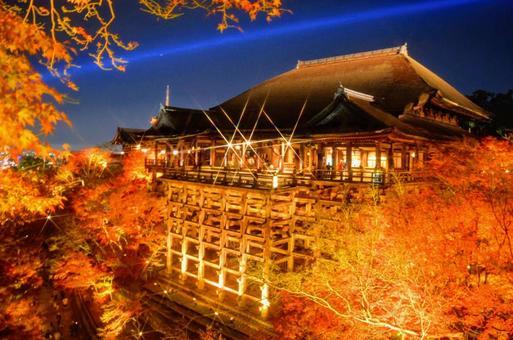 Kiyomizu Temple in autumn. Illumination of autumn leaves. The appearance of the night view