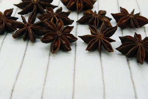 Spices _ star anise