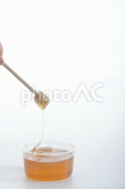 蜂蜜をすくう5の写真