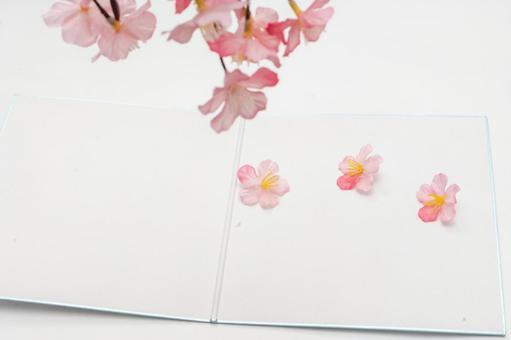 벚꽃과 색종이