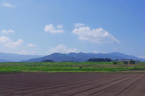 Broad field