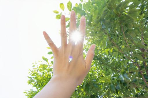 Woman holding her hand over the sun