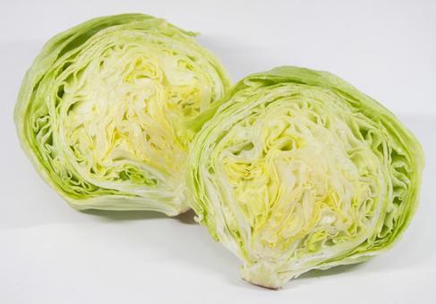 Kenzan lettuce