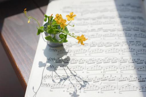 Sheet music and clover flowers