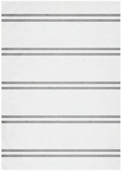Grunge texture Double vertical border gray