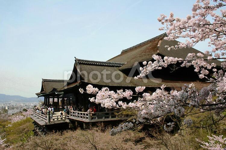 京都 清水寺の写真