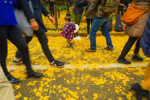 Shinku gaien ginkgo rowed with ginkgo and legs of people