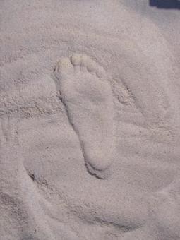 모래 발자국 발 백사장 모래 해변