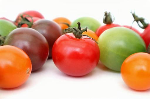 Colorful tomato 02