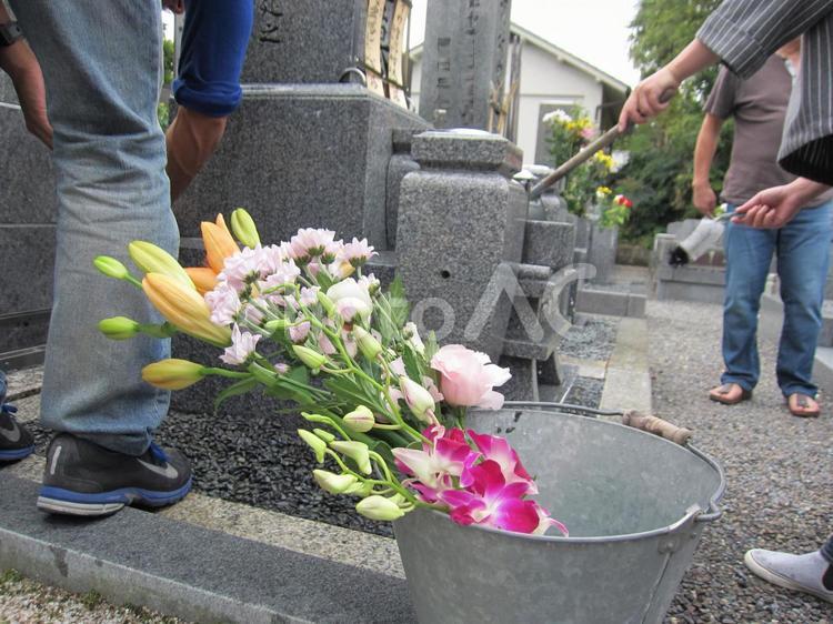 お墓掃除を待つお花の写真