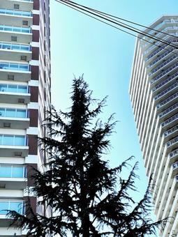 도시의 고급 고층 아파트