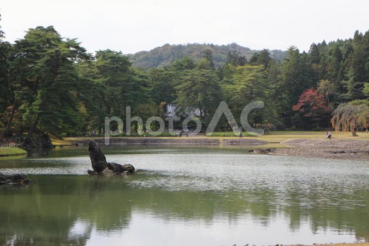 毛越寺大泉が池2の写真