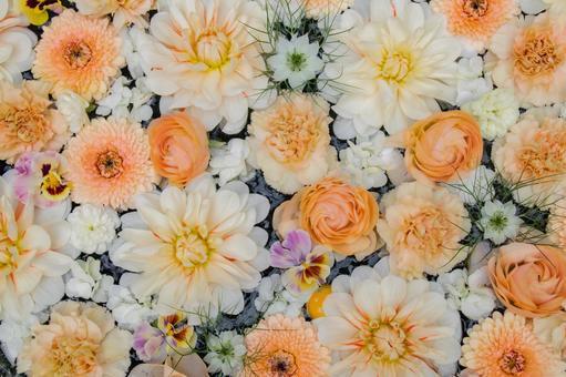 Orange flower wall
