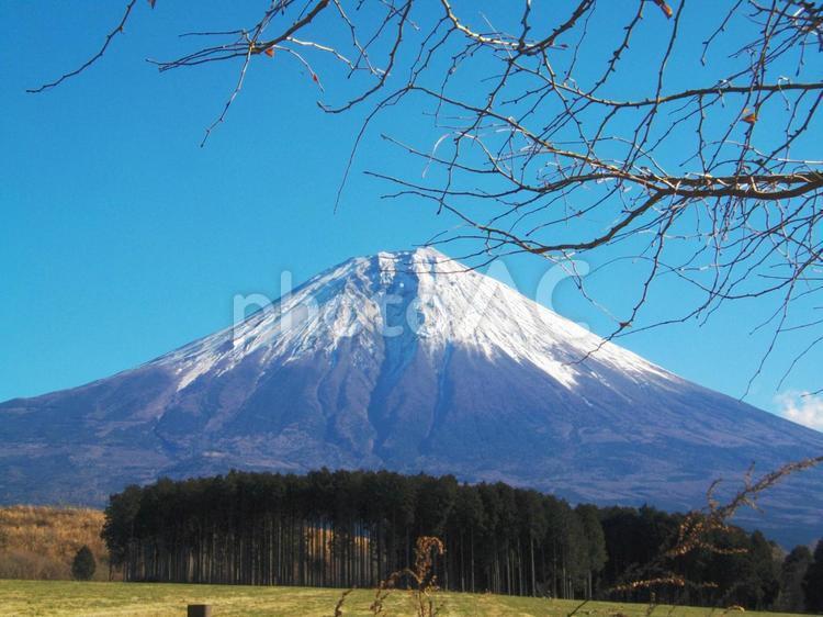 朝霧高原からの富士山の写真