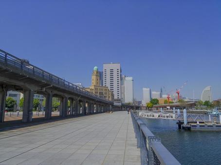 【카나가와 현】 요코하마 세관 (퀸)과 코끼리의 코 파크