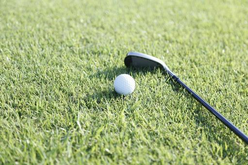 Grass club and golf ball 24