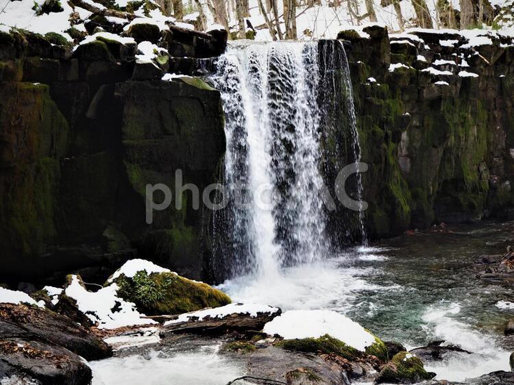ほんのり雪化粧をした奥入瀬渓流の銚子大滝の写真