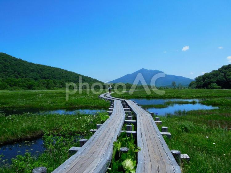 尾瀬ヶ原の写真