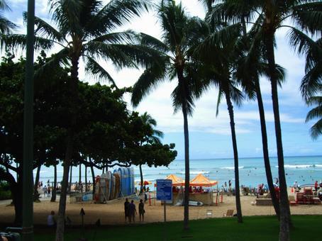 Hawaiian scenery 8