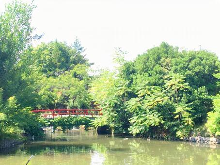 연못에 떠있는 붉은 다리