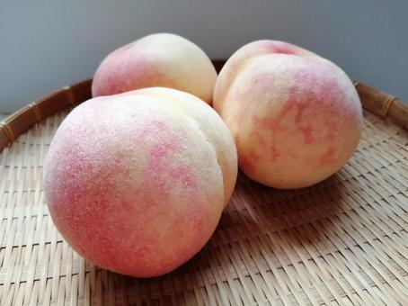 Peach Kanoiwa White Peach 1