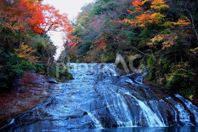 粟又の滝の写真