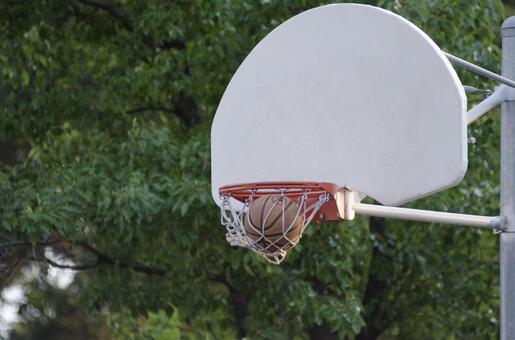 Landscape playing basketball 5