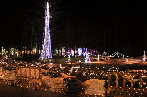 Christmas illumination (Nagano)