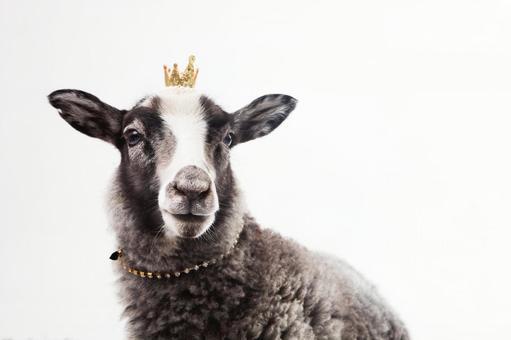 Crown crown 1