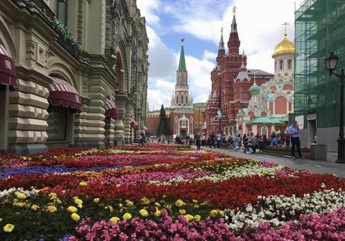 붉은 광장의 화단, 모스크바, 러시아.