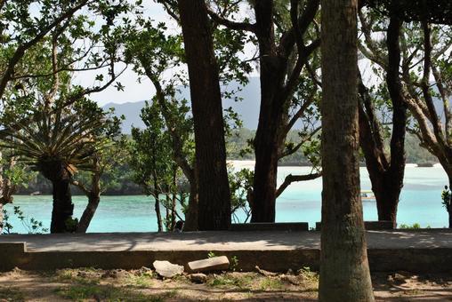 Scenery of Ishigakijima
