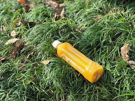 桔子汁扔在草坪上