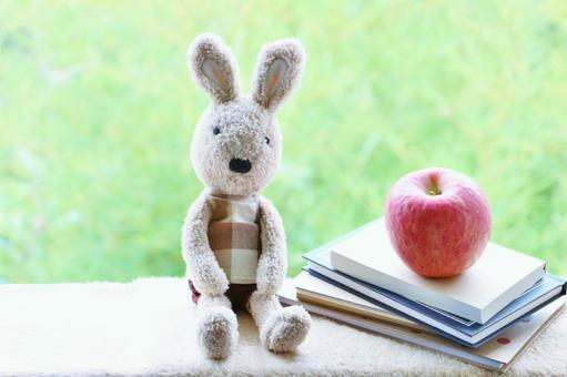 Usagi and apples