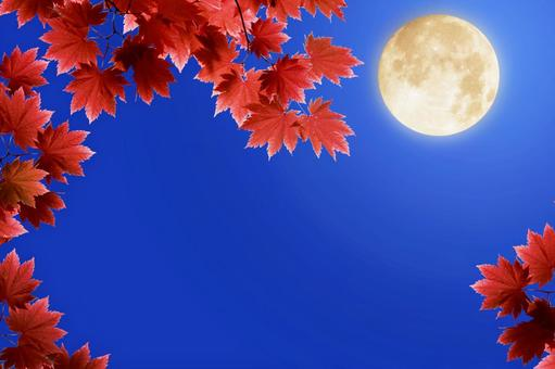 보름 단풍과 달의 풍경