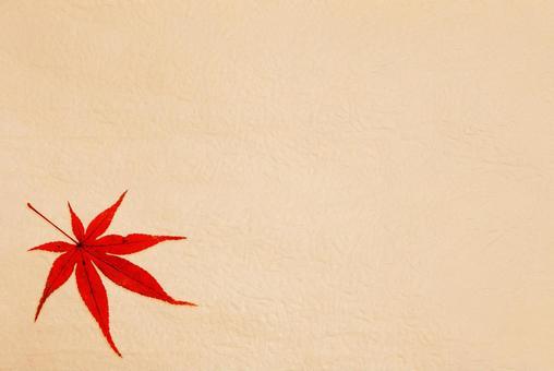 秋天的圖像背景材料(紅楓和棕色日本紙)