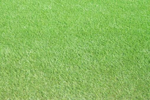 Lawn_artificial turf_47