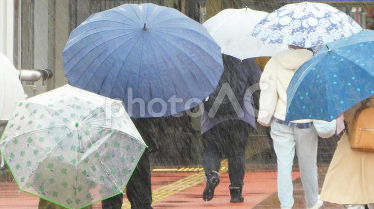 どしゃ降りの雨の写真